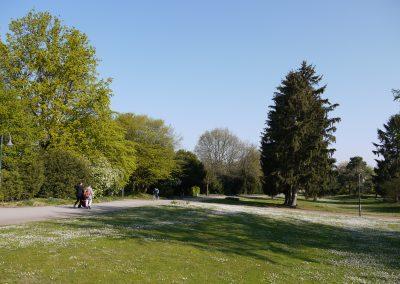 2019-04-16 Südpark (9)